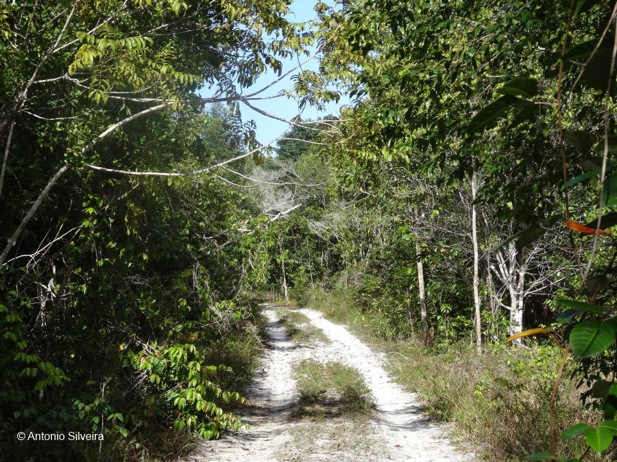 Fazenda Country2-CanavieirasBA-11-10-13-ASilveira