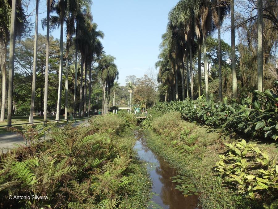 JardimBotanico4-SP-20-9-11-ASilveira