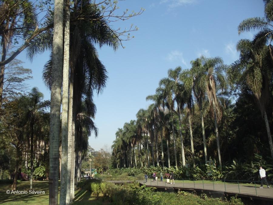 JardimBotanico5-SP-20-9-11-ASilveira