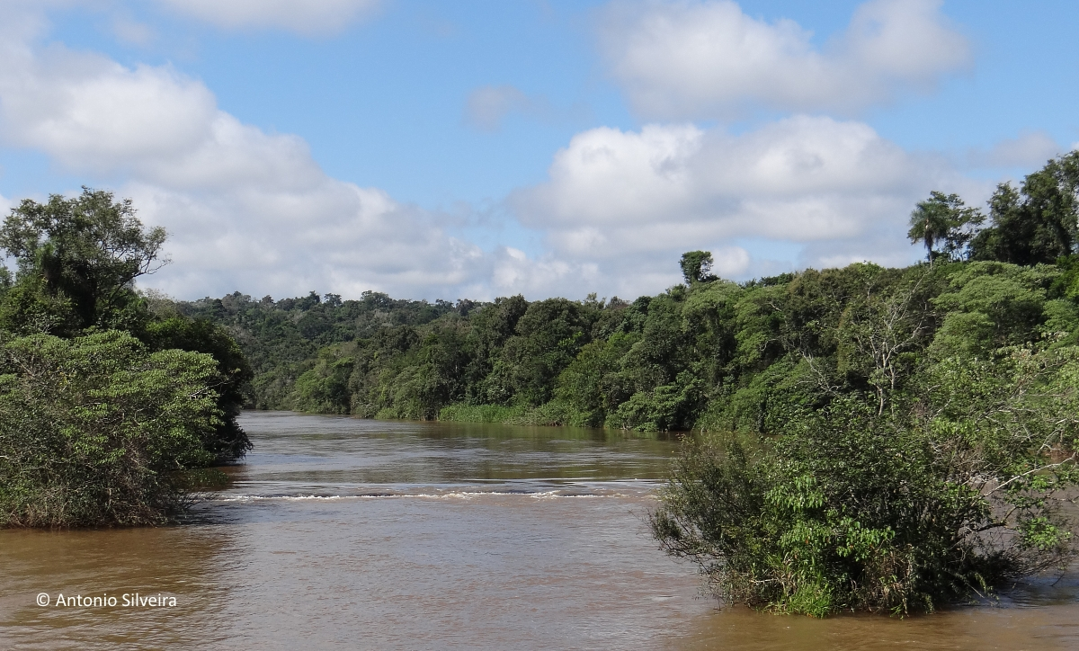 IguazuNP20-AR-24-4-15-ASilveira