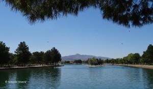 Sunset Park1-LVegas-NV-16-7-15-ASilveira