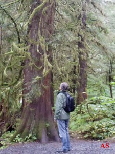 AS-Alasca Rainforest Sanctuary,Ketchikan-Alasca,3-9-10-ASilveira
