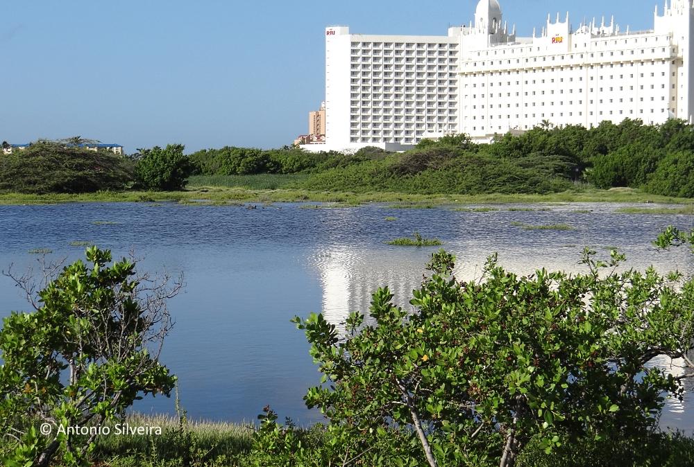 Alagados1-PalmBeach-Aruba-20-11-15-ASilveira