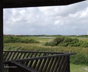 BubaliBirdSanctuary5-Aruba-15-11-15-ASilveira