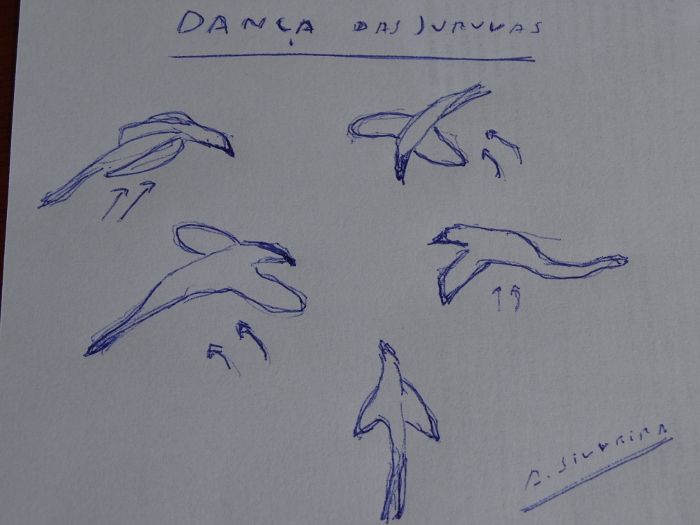 Danças da Juuva-PNItatiaia-5-2003-desenho ASilveira