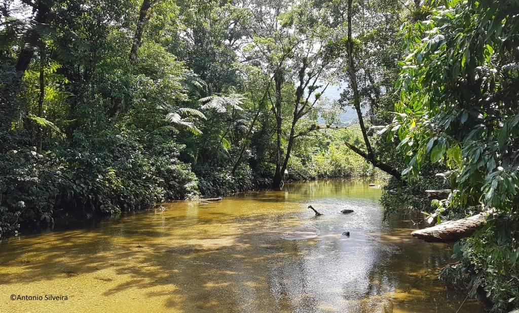 Rio Bixoro2-FazRondonia-MongaguaSP-9-3-17-ASilveira